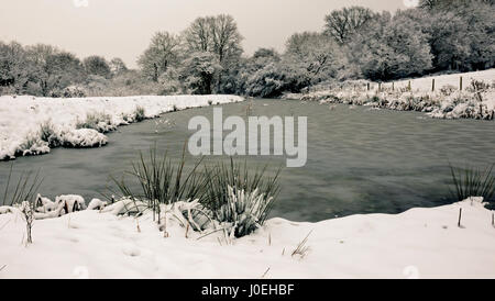 A winter's day along a frozen canal. - Stock Photo