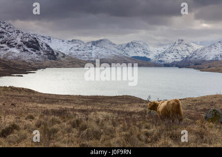 Loch Arklet near Aberfoyle in the Lomond and Trossachs National Park - Stock Photo