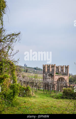 Vineyard and Tower of the Ancient Italian Walled City of Soave. The old town is surrounded by medieval walls and - Stock Photo