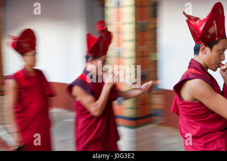 Monks carrying out Buddhist ceremony, Punakha Dzong (monastery), Punakha, Bhutan - Stock Photo