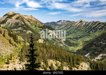 View of Oh-Be-Joyful Creek drainage from Gunsight Pass Road, Gunnison National Forest, near Crested Butte, Colorado - Stock Photo