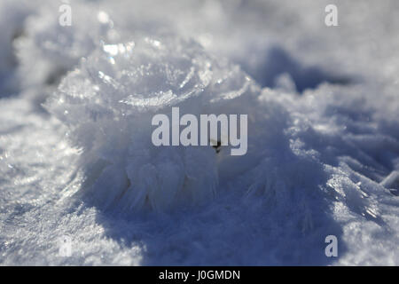 Snow crystals in the form of a flower. - Stock Photo