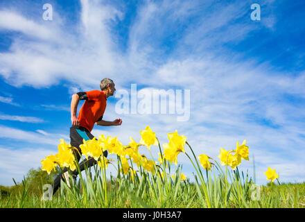 Seaton Carew, County Durham, north east England, United Kingdom. 13th Apr, 2017. Weather: A jogger runs past Daffodils - Stock Photo