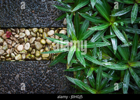 The grass is wet after the rain beside a bridge of stone of different colors, background - Stock Photo