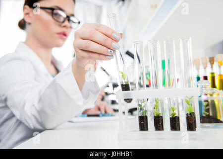 Close-up view of female scientist holding test tube with green plant - Stock Photo