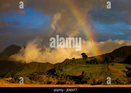 Rainbow at sunset in Volcan Baru National Park, Chiriqui province, Republic of Panama. - Stock Photo