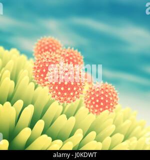 Pollen grains on flower , Hay fever , Pollen allergy