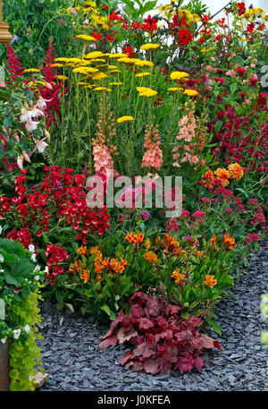 Colourful garden border with a wonderful display of herbaceous and perennial plants - Stock Photo