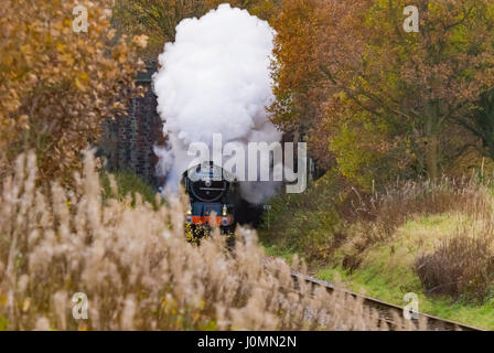 Tornado steam loco engine at Nuttall tunnel on the ELR East Lancs Railway. Lancashire - Stock Photo