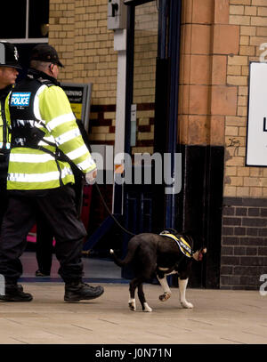 Leicester, UK. Thursday 13th April 2017. Police carring out their final check before Her Majesty Queen Elizabeth - Stock Photo