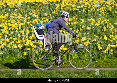 Aberdeeen, Scotland, UK.  UK Weather. 15th April, 2017.  Bright & Sunny spring day at Riverside on the Banks of - Stock Photo