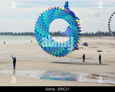 Semaphore, South Australia, Australia - April 15, 2017: Flying of a figure kite in the shape of a sea urchin at - Stock Photo