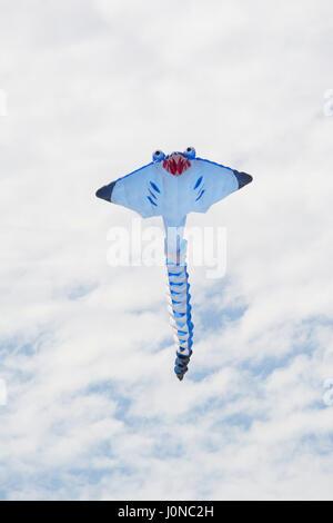 Semaphore, South Australia, Australia - April 15, 2017: White stingray figure kite flying at the Adelaide International - Stock Photo