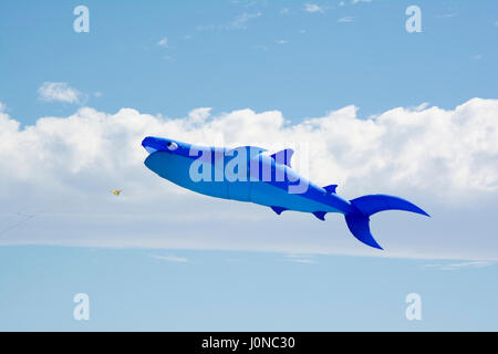 Semaphore, South Australia, Australia - April 15, 2017: Flying blue figure kite shaped as a shark at the Adelaide - Stock Photo