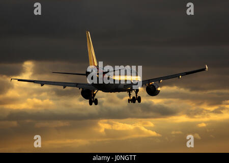 EI-EIB Alitalia Airbus A320-200 cn 4249 Landing at London Heathrow airport at sunset - Stock Photo