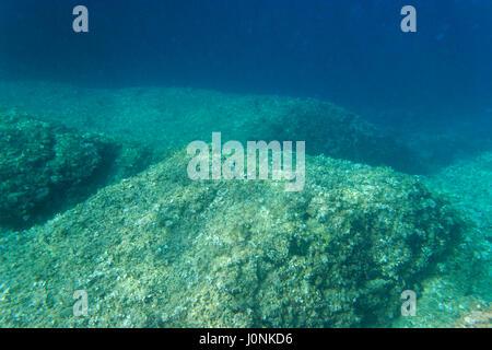 Underwater view of Cape Kamenjak, Istria, Croatia - Stock Photo