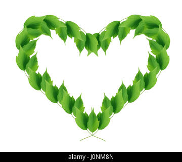 Beautiful picture frame like a heart made from green leaves - Stock Photo