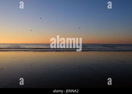 Wimereux beach in the north of France, just after sunset with three birds in de sky - Stock Photo