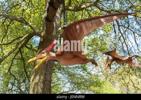 Pteranodon, Jurassic Kingdom, Osterley Park, London - Stock Photo