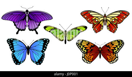 A set of colorful butterflies - Stock Photo