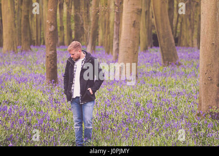Blonde Man in a Bluebell Wood, Wiltshire - Stock Photo