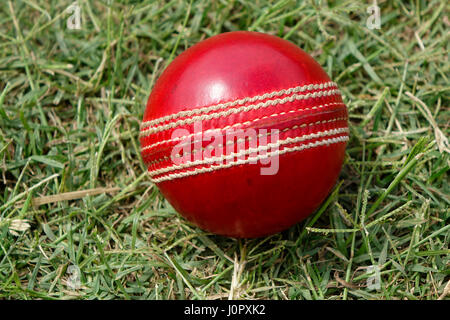 A brand new red Cricket ball with white stitches in green grasses - Stock Photo