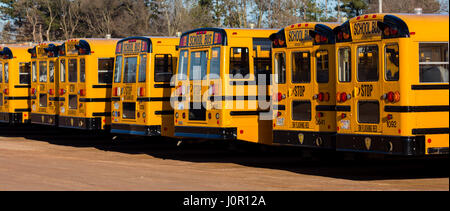 Row of school buses lined up in a parking lot - Stock Photo