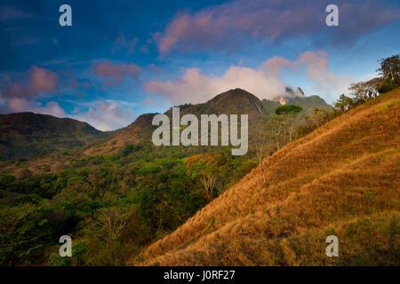 Early morning in Altos de Campana National Park, Cordillera Central, Republic of Panama. In the far background (right) - Stock Photo