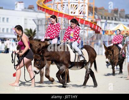 Donkey rides on Weymouth Beach, Dorset, UK. Children enjoy a donkey ride on the beach Credit: Finnbarr Webster/Alamy - Stock Photo