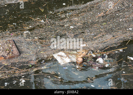 Pollution and rubbish floating on water in Dutch harbor - Stock Photo