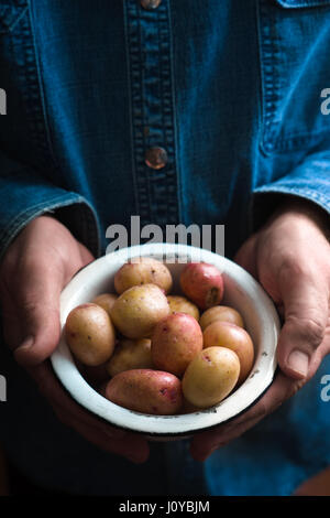 Hands with raw potatoes in the metal bowl - Stock Photo