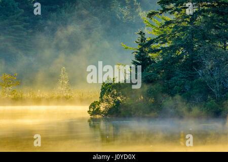 Early morning fog on pond by Lunenburg Nova Scotia, Canada - Stock Photo