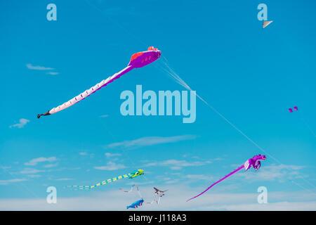Adelaide, Australia - April 15, 2017: Adelaide International Kite Festival at Semaphore Beach. Event gathered together - Stock Photo
