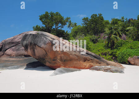 Sandy beach and zone of bathing. Baie Lazare, Mahe, Seychelles - Stock Photo