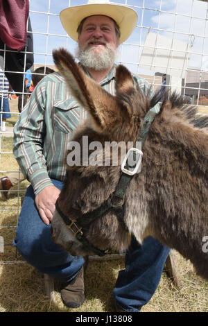 Nathan Lincoln, Noah's Ark Petting Zoo and Pony Ride owner, supervises the petting zoo area during the annual Spring - Stock Photo