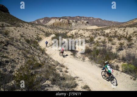 Mountain biking in Big Bend Ranch State Park, Lajitas, Texas. - Stock Photo