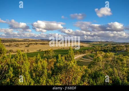 Clare Valley in rural South Australia is a mixture of farming and wine growing properties - Stock Photo