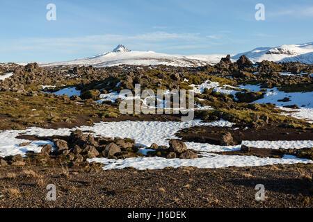 Moss covered rocks in the lava field Berserkjahraun, Snæfellsnes (Snaefellsnes) peninsula, western Iceland - Stock Photo
