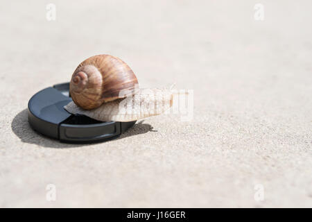 Large snail crawls on the lens cover of the camera lying on the asphalt - Stock Photo