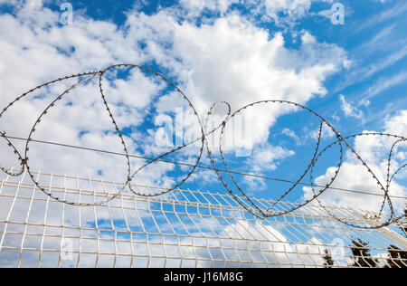 Barbed wire against the blue sky background. Protective fencing specially protected object of barbed wire - Stock Photo