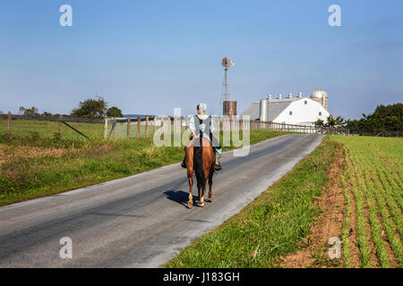 Amish young lady riding a horse on a rural Amish farm country road with a white barn, Lancaster County, rural Pennsylvania, - Stock Photo
