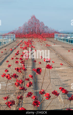 Shoeburyness, Southend-on-Sea, Essex, UK. 19th Apr, 2017. Barge Pier, Gunners Park is host to Poppies: Wave, a sweeping - Stock Photo