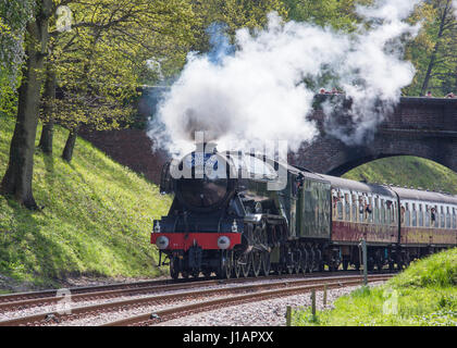 Horsted Keynes, West Sussex, UK. 19th April 2017. The Flying Scotsman passes beneath a bridge on its way from Sheffield - Stock Photo