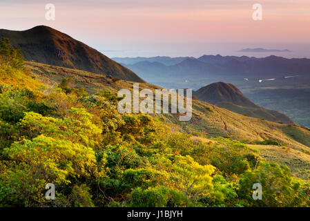 Early morning in the mountains of Altos de Campana National Park, Republic of Panama. - Stock Photo