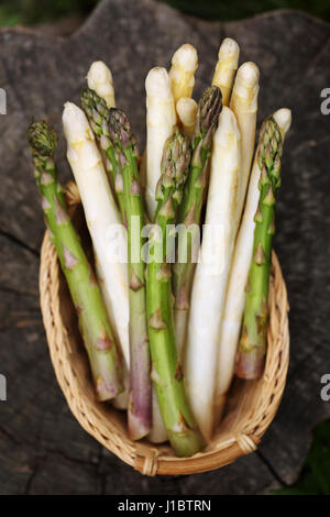 white and green asparagus - Stock Photo