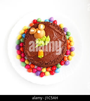 A chocolate Easter cake surrounded by mini eggs. - Stock Photo
