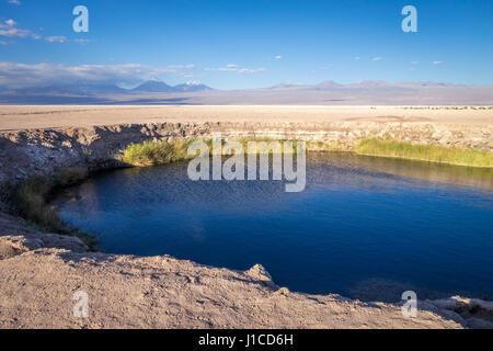 Ojos del salar lagoon landmark in San Pedro de Atacama, Chile - Stock Photo