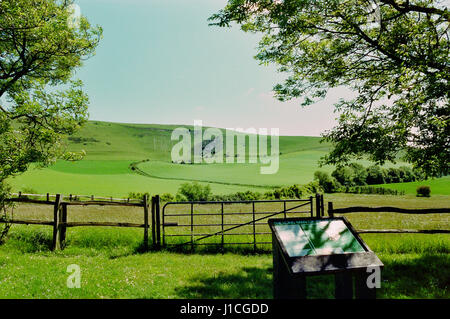 The Long Man of Wilmington on the South Downs, near Eastbourne, East Sussex UK - Stock Photo