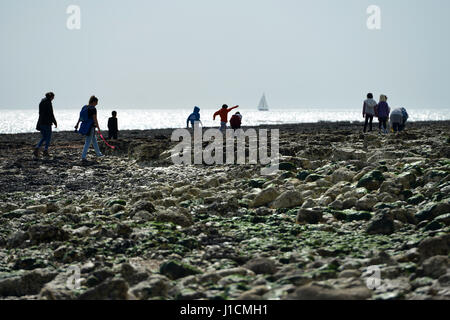 People enjoying a day out on a rocky shoreline in Sussex, UK - Stock Photo