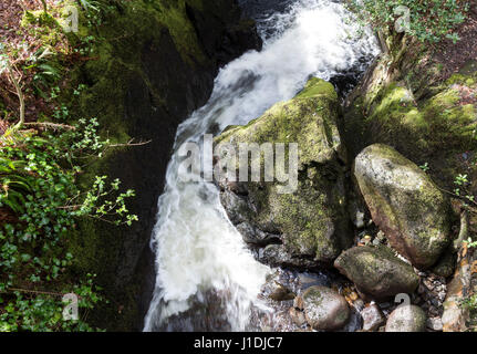 Boulder Worn into the Shape of a Trolls Head Laying in a Stream Bed, Glen Trool, Galloway Hills, Scotland - Stock Photo
